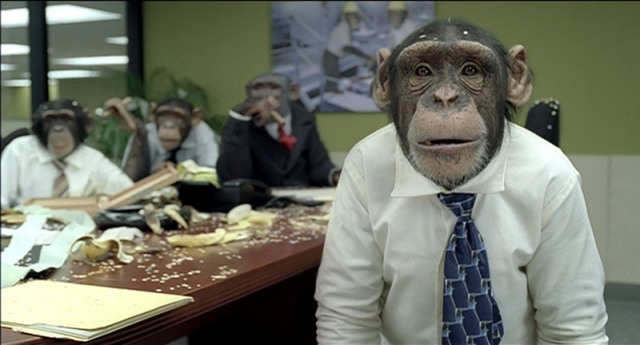 The popular chimpanzee stars of CareerBuilder.com's Super Bowl ads are returning to the big game this year.  CareerBuilder.com is back in the Super Bowl TV ad lineup with more hilarious tales of a human employee working in an office populated entirely by chimps.  (PRNewsFoto/CareerBuilder.com)